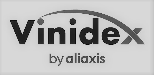 Vinidex by Aliaxis BEST 2019 logo
